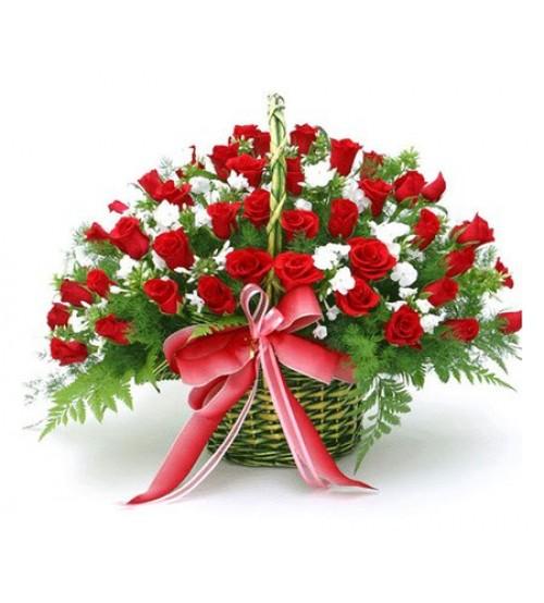 Lãng hoa tình yêu- LATY1